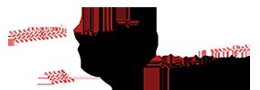 Logo SoloRaids